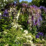 How to help insects in your garden to help pollination