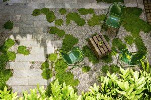 Green chairs in garden