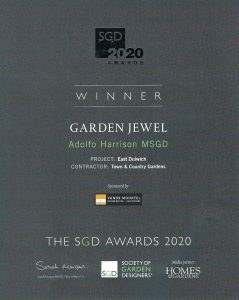 the sdg awards 2020