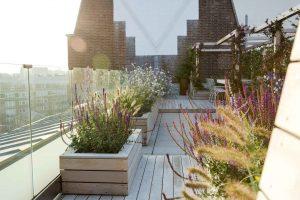 allsop place garden - garden care